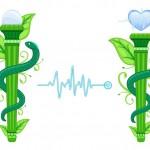 The 3 Guiding Principles of Holistic Health