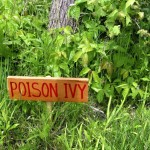 Here's an Example of Poison Ivy Hypnosis