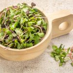 The Health Benefits of Microgreens