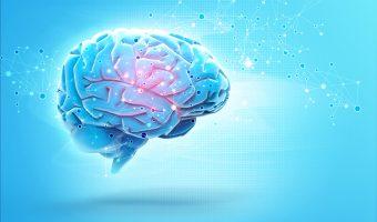 EFT Workshop News and Article on Brain Waves