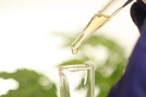 photo of essential oil
